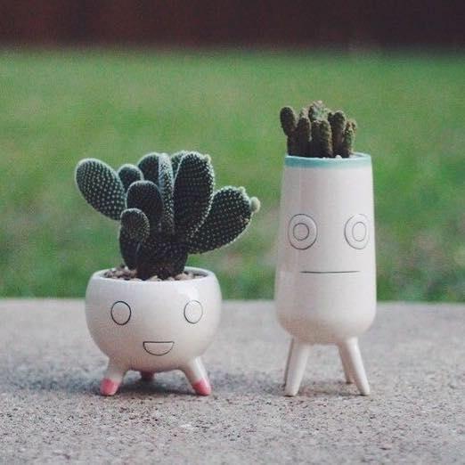Salong Kaktus